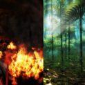 Paradise Vs Hell 123x123